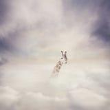 Giraf en wolken stock foto