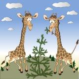 Giraf in het Noorden Royalty-vrije Stock Foto