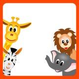 Giraf, olifant, zebra en leeuw Stock Afbeelding