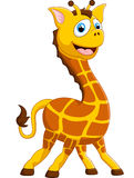 Girafa adorável dos desenhos animados no fundo branco Imagem de Stock Royalty Free