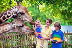 Girafa de alimentação da família em um jardim zoológico