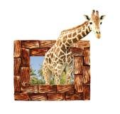 Girafa no quadro de madeira com efeito 3d Fotos de Stock