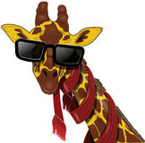 Girafa nos óculos de sol Imagens de Stock