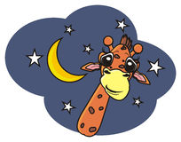 Girafa que espreita entre as estrelas Fotos de Stock