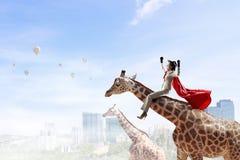 Girafe d'équitation de femme d'affaires Media mélangé Photographie stock