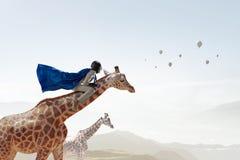 Girafe d'équitation de femme d'affaires Media mélangé Images libres de droits