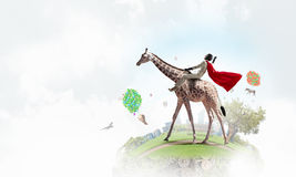 Girafe d'équitation de femme d'affaires Media mélangé Photos stock