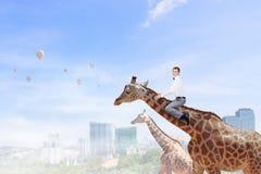 Girafe de tour d'homme Media mélangé image libre de droits