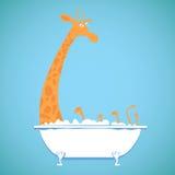 Girafe drôle dans un bain Photographie stock