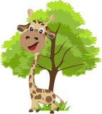 Girafe et arbre mignons Photos stock
