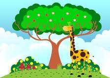 Girafe sous l'arbre par temps ensoleillé Photos stock