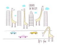 Girafes dans la ville Illustration de vecteur pour des enfants Photos libres de droits