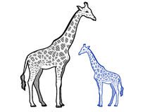 Girafföversikter Stock Illustrationer
