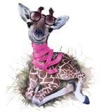 Giraff, exponeringsglas och halsduk för Adobekorrigeringar hög för målning för photoshop för kvalitet för bildläsning vattenfärg  arkivfoton