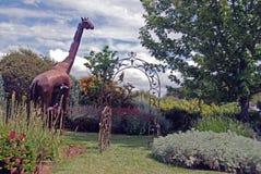 Giraff i trädgården Fotografering för Bildbyråer