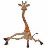 giraff toon Royaltyfri Fotografi
