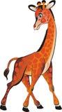Giraffa Immagine Stock Libera da Diritti
