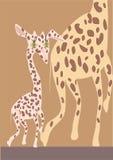 Giraffa bianca Immagine Stock