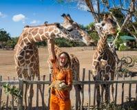 Giraffa d'alimentazione della ragazza allo zoo fotografia stock