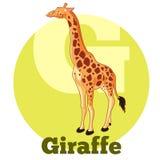 Giraffa del fumetto di ABC Fotografia Stock