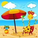Giraffa e un uccello sulla spiaggia Fotografia Stock