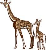 Giraffa e vitello Fotografie Stock