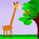 Giraffa ed il suo fratello germano della farfalla Fotografia Stock