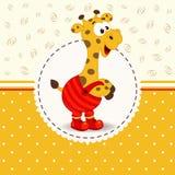 Giraffa in pantaloni Fotografie Stock