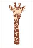 Giraffa su priorità bassa bianca Fotografie Stock Libere da Diritti