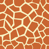 giraffe άνευ ραφής δέρμα προτύπων Στοκ Εικόνες