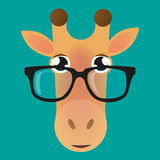 Giraffe είδωλο που φορά τα γυαλιά Στοκ Εικόνες