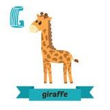 Giraffe Επιστολή Γ Χαριτωμένο ζωικό αλφάβητο παιδιών στο διάνυσμα Funn ελεύθερη απεικόνιση δικαιώματος