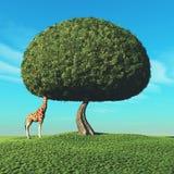 Giraffe και το δέντρο διανυσματική απεικόνιση