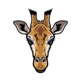 Giraffe κεφάλι διανυσματική απεικόνιση