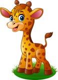 Giraffe μωρών κινούμενων σχεδίων διανυσματική απεικόνιση