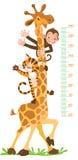 Giraffe, πίθηκος, τίγρη Τοίχος μετρητών ή διάγραμμα ύψους ελεύθερη απεικόνιση δικαιώματος