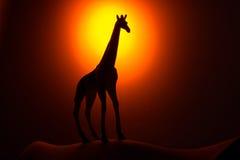 Giraffe σκιαγραφία στην ανατολή Στοκ εικόνες με δικαίωμα ελεύθερης χρήσης
