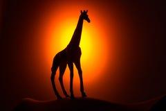Giraffe σκιαγραφία στην ανατολή Στοκ Εικόνα