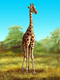 Giraffe. Wildlife: giraffe in its native african environment. Digital illustration stock illustration