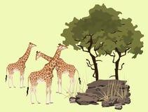 Giraffe. Abstract giraffe illustration with rocks and bush vector illustration