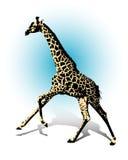 giraffe ilustração stock