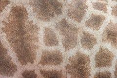 неподдельная кожа кожи giraffe Стоковая Фотография