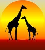 Giraffe illustrazione di stock