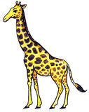 giraffe κίτρινο Στοκ φωτογραφία με δικαίωμα ελεύθερης χρήσης