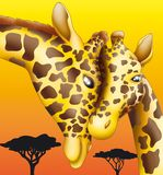 Giraffe. Mother and child giraffe with african tree silhouette Royalty Free Stock Photography