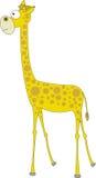 giraffe Images stock