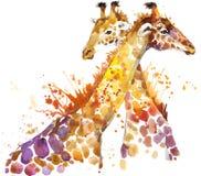 giraffe Acquerello dell'illustrazione della giraffa illustrazione di stock
