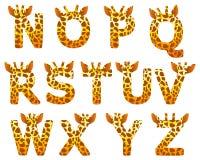Giraffe alphabet set from N to Z Royalty Free Stock Photo