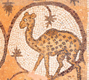 Giraffe at ancient mosaic in an christian church i Royalty Free Stock Photo