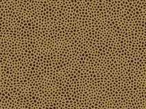 Giraffe animal da textura da pele Fotos de Stock